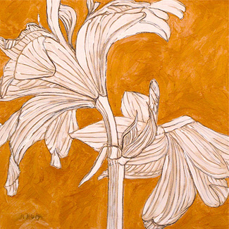 White Amaryllis on Gold No. 2